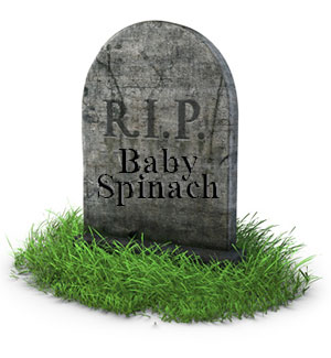 rip-baby-spinach