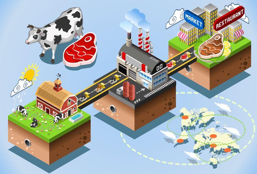 food_supply_chain