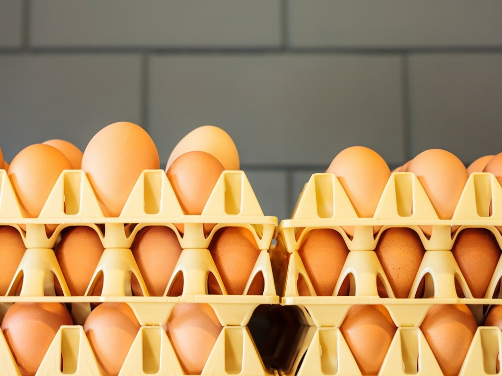Crates of cage-free eggs in a fast food restaurant kitchen